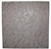 Салаир №1 (300×300)